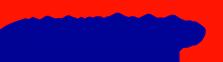 Networks infra Logo
